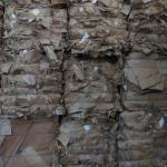 Reciclagem de aparas de papel
